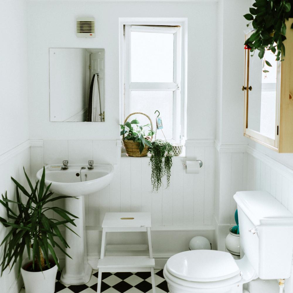 plasticvrij badkamer met planten