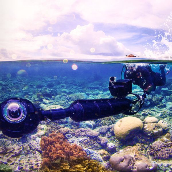 Duurzame documentaires - Chasing Coral
