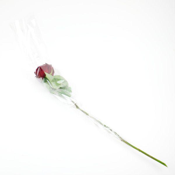 Valentijnsroos plastic