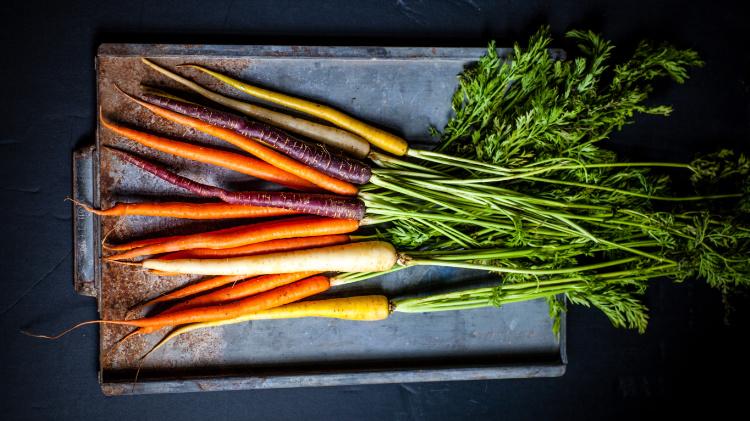 eco voedsel in seizoen wortelen