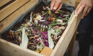 natuurlijk tuinieren compost