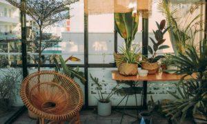 duurzaam wonen tips planten