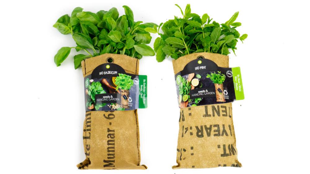 Hangtuintjes Baza zelf je kruiden kweken biologisch