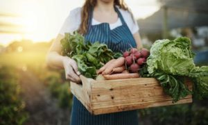 duurzame keurmerken groenten en fruit
