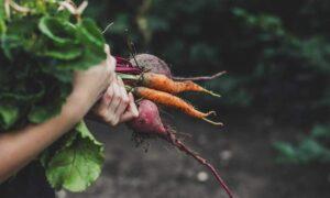 rode groenten als zonbescherming