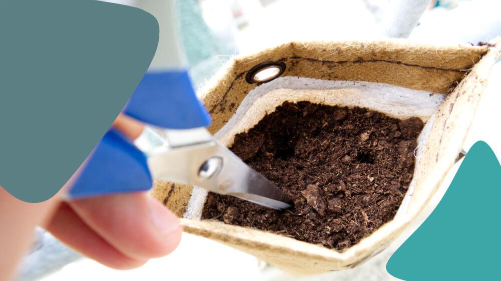 plant je eigen kruiden zaadjes planten