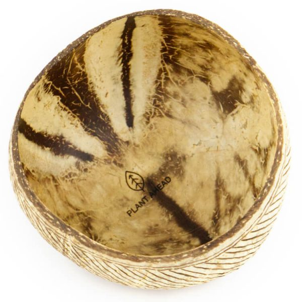 duurzaam schaaltje kokosnoot bowl