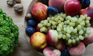 fruitvliegjes fruitschaal