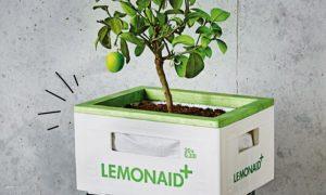 Lemonaid & ChariTea upcycling ideeën