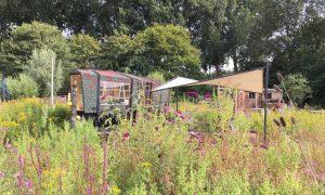 duurzame natuurhuisjes in Nederland