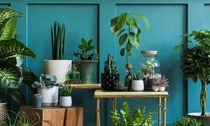 duurzame home office planten