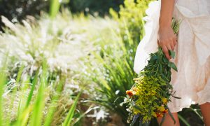 duurzame bloemen plukken pluktuin