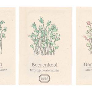 biologische groentezaadjes Dille & Kamille