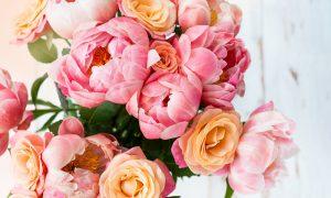 duurzame bloemen tuin kweken