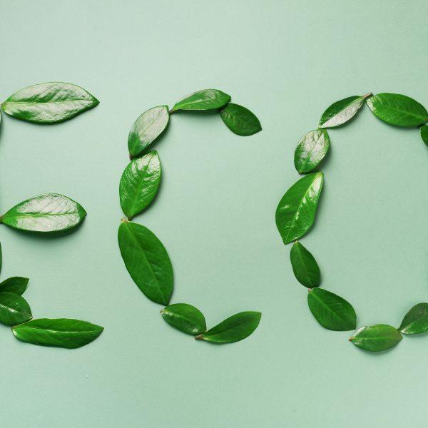 duurzaam cadeau