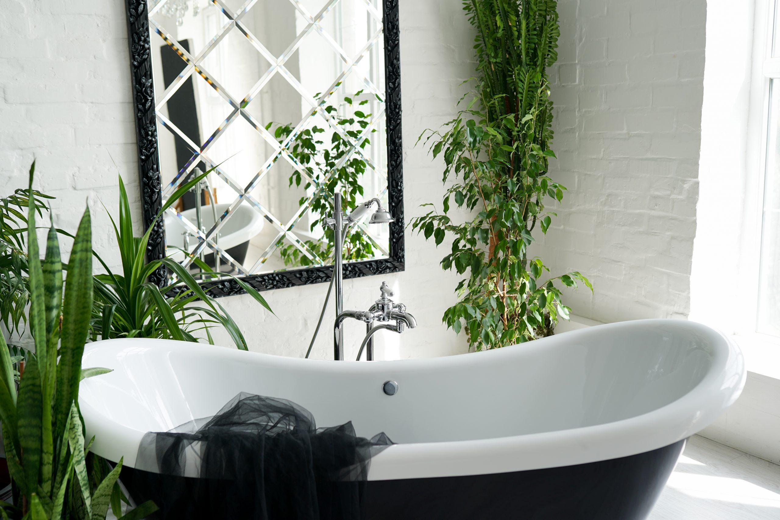 bathtub and green plants in bathroom interior in l R26WMF8 1 scaled