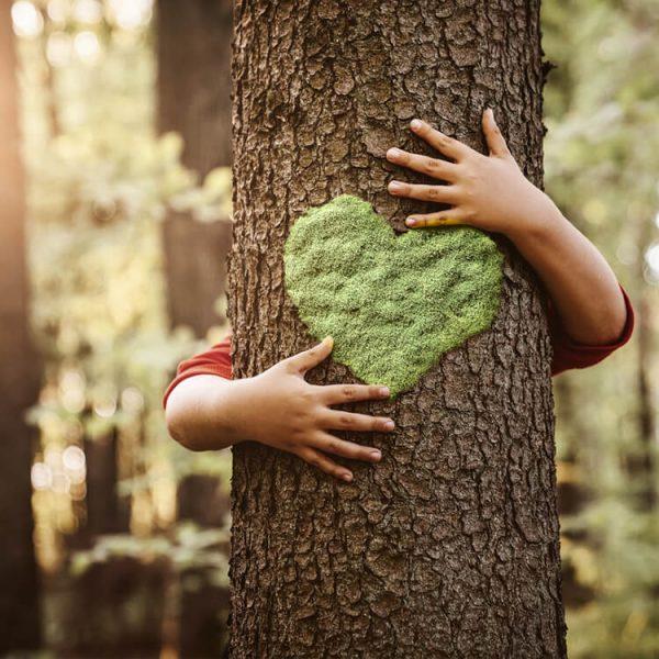 gerecycled papier boomvriendelijk