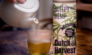 Dutch Harvest thee